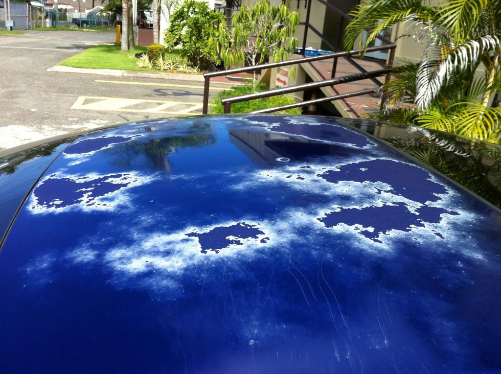 Honda Gainesville Ga >> 2008 Honda Civic Paint Fading: 24 Complaints