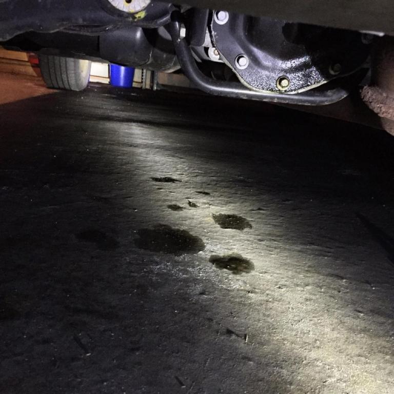 2012 ford edge ptu leak