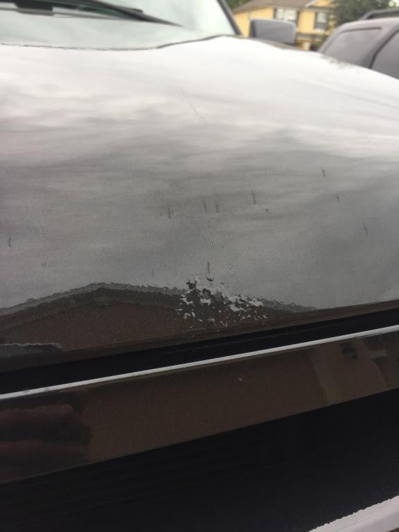 2010 Ford Expedition Bubbling Paint On The Hood And The