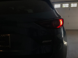 tail lights not lit properly
