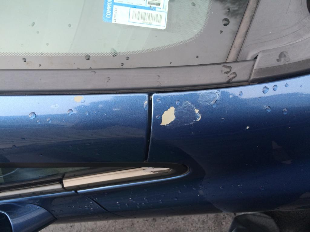 honda civic paint peeling  complaints