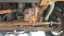 rusted from frame to steering linkage