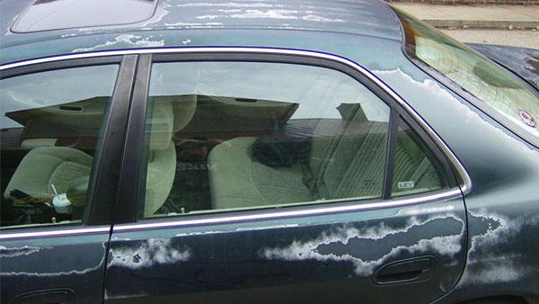 2000 Honda Accord Clear Coat Is Peeling 48 Complaints