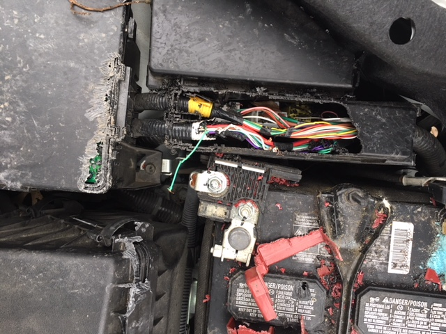 Which Cars Have Soy Based Wiring