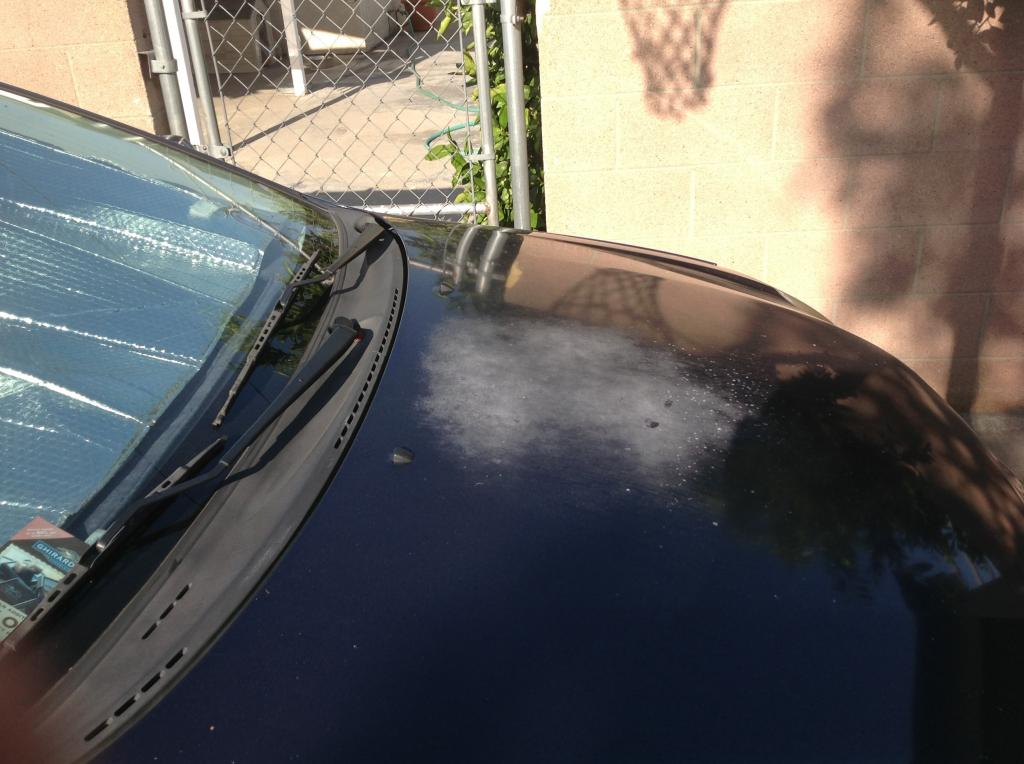 2007 Toyota Corolla Paint Is Chipping Severely On The Hood