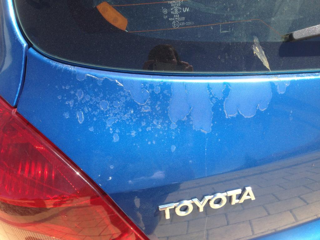 2008 Toyota Yaris Clear Coat And Paint Peeling 17 Complaints