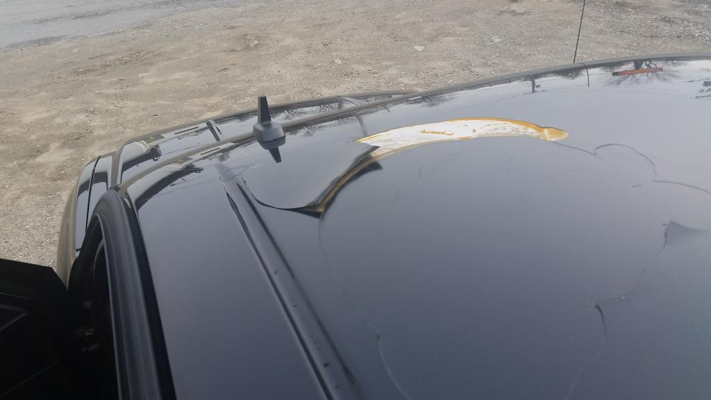 2014 Silverado Transmission >> 2010 Chevrolet Silverado Paint Peeling And Cracking: 1 Complaints