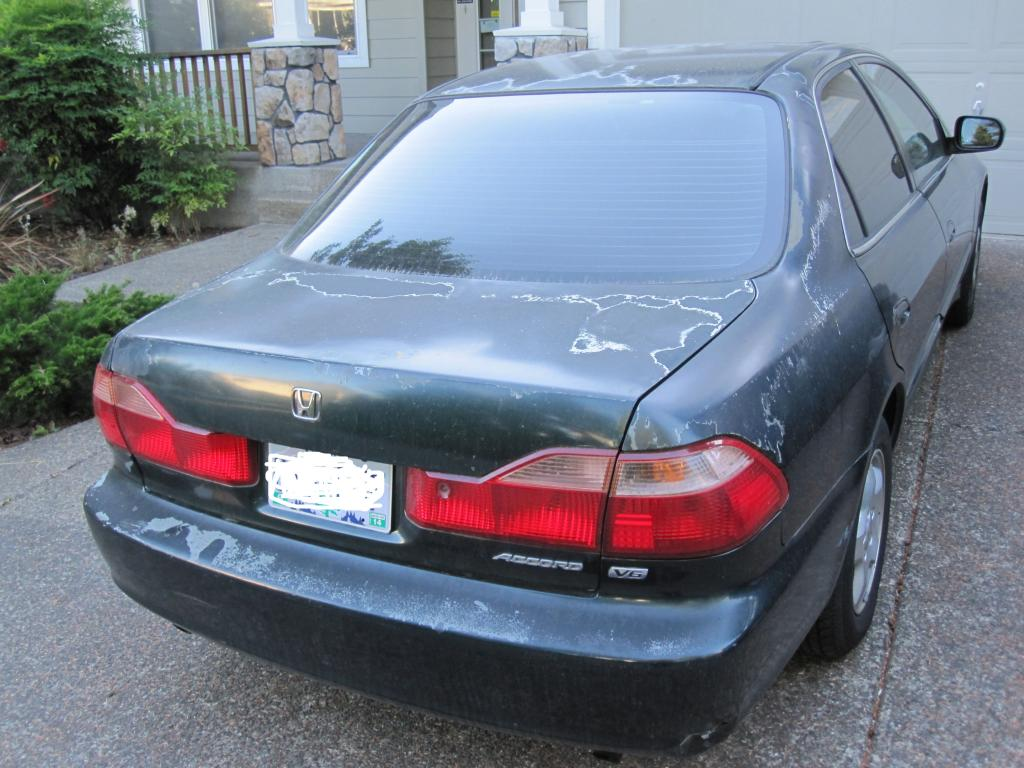 Honda Paint Recall >> 1999 Honda Accord Paint Is Peeling: 7 Complaints