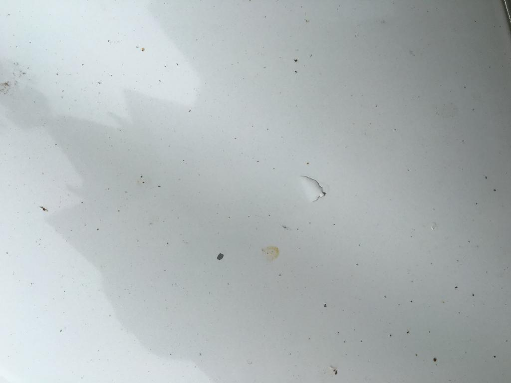 2010 hyundai sonata paint is peeling 15 complaints