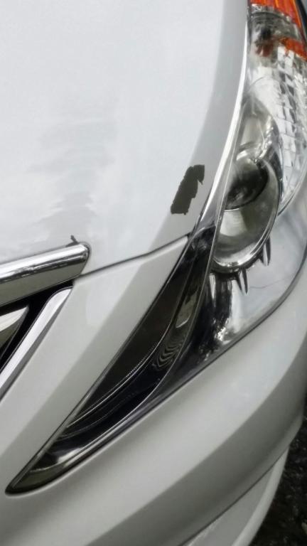 2011 Hyundai Sonata Paint Peeling 23 Complaints
