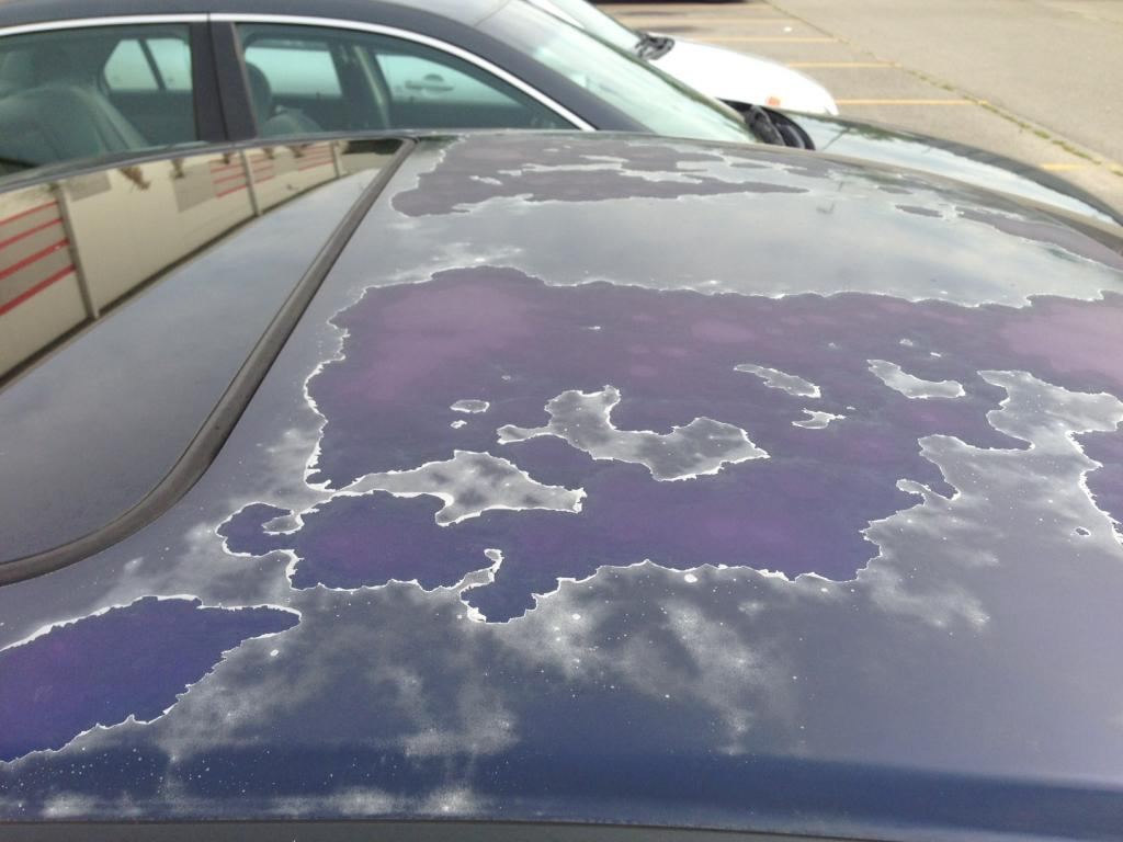 Why Is My Paint Cracking On My Car