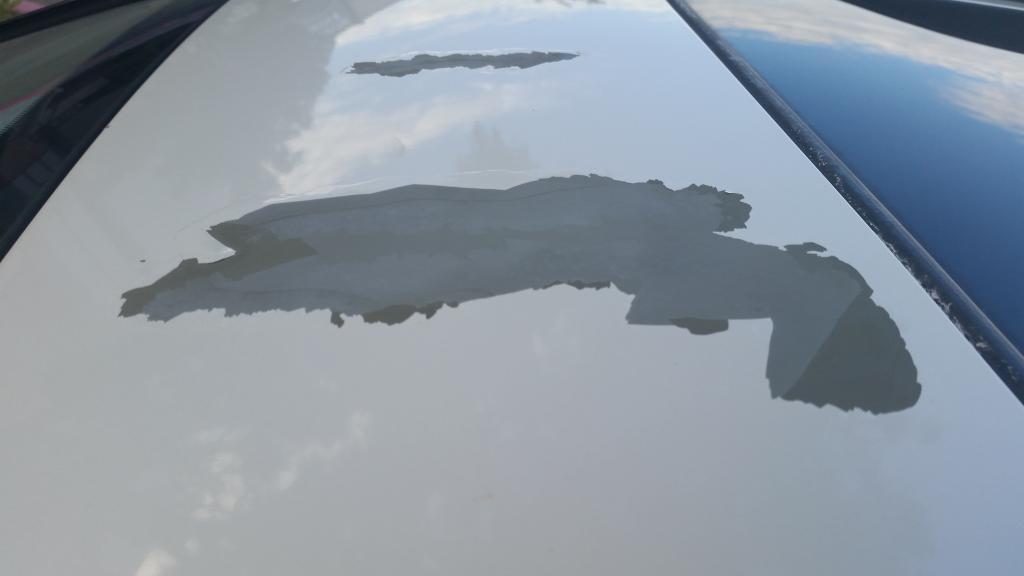 2009 Toyota RAV4 Paint Peeling: 9 Complaints