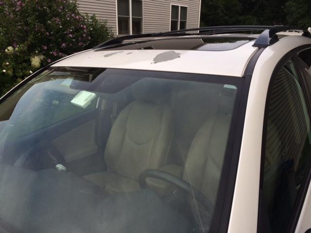 Toyota Blizzard Pearl Paint Problems >> 2009 Toyota RAV4 Paint Peeling: 9 Complaints