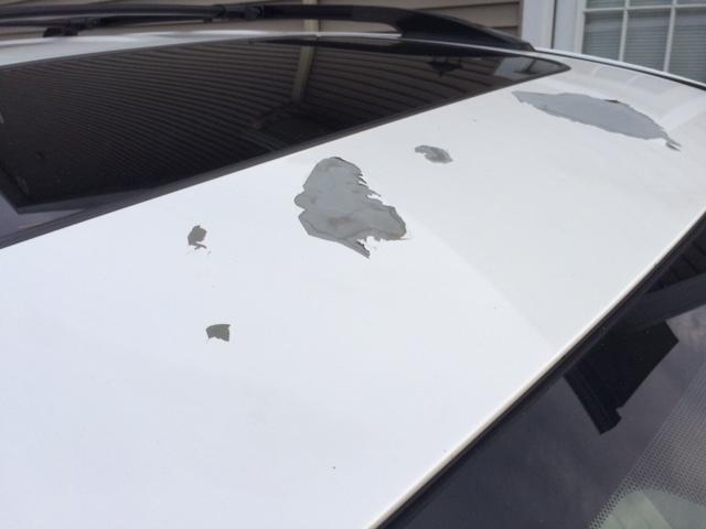 Toyota Blizzard Pearl Paint Problems >> 2009 Toyota Rav4 Paint Peeling 9 Complaints