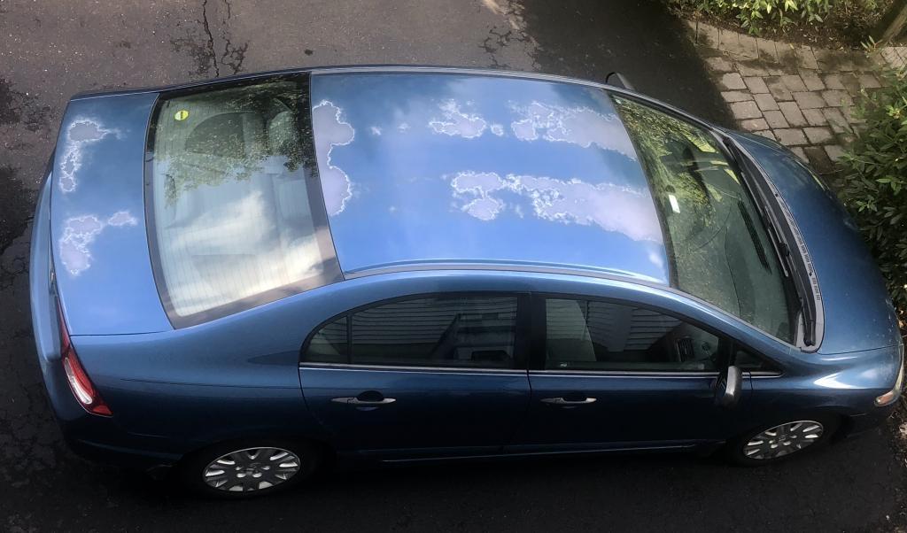 Honda Paint Recall >> 2010 Honda Civic Paint Is Peeling 37 Complaints