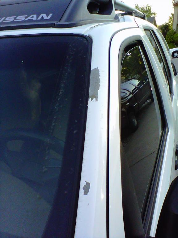 2005 Nissan Xterra Paint Peeling Off 3 Complaints