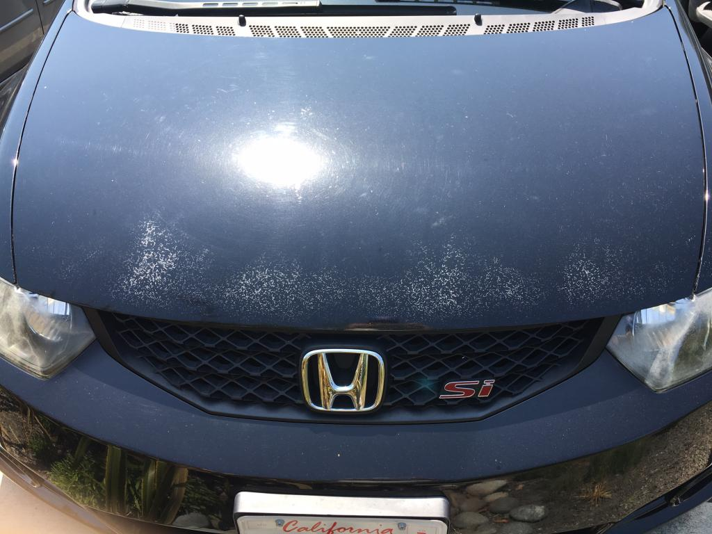 Fix My Car >> 2009 Honda Civic Paint Oxidation And Cracks In Paint: 17 Complaints