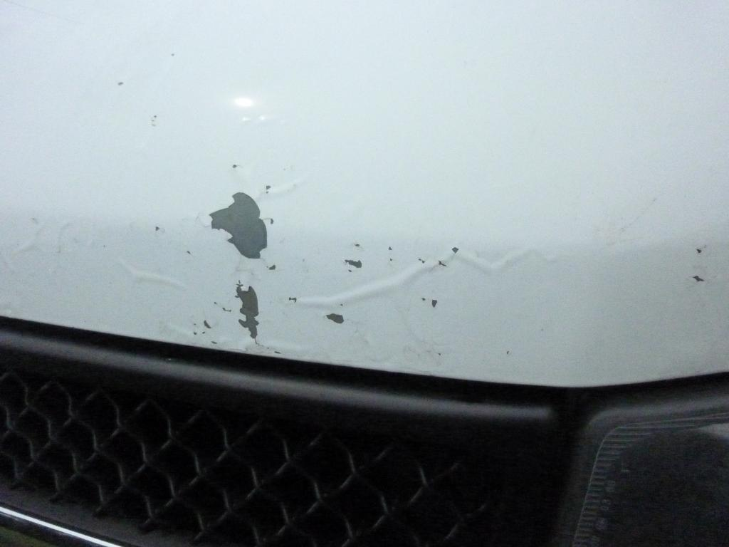 2006 Chevrolet Express Paint Is Flaking Off Carcomplaints Com