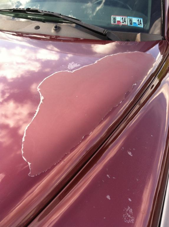 2000 Dodge Dakota Paint Completely Faded On Hood And Roof