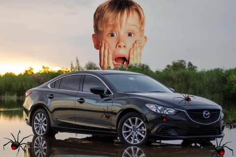 Spider Infestations in Mazda6 Engines