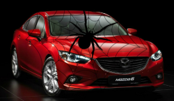 Spiders Cause Mazda to Recall Mazda6 For Second Time