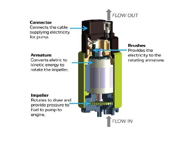 A diagram of a fuel pump with labels pointing out key details like the flow of fuel, and where the impeller, armature, brushes, and connectors are.