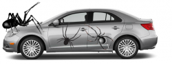 Suzuki Recalls Kizashi After Spiders Cause Gas Leaks