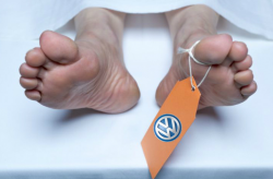 Study: 59 Deaths in U.S. Due To Excess Volkswagen Emissions