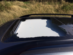 Volkswagen Exploding Sunroof Lawsuit Says Glass Injures People